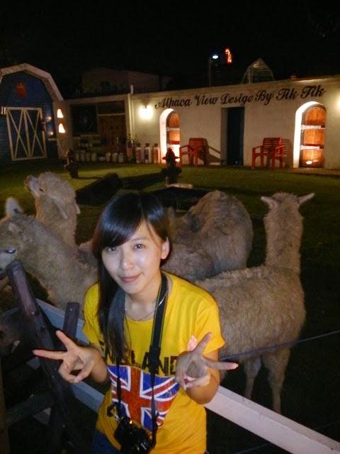 2013 Bangkok Alpaca Restaurant
