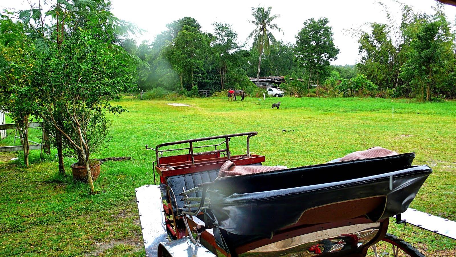 SN Farm Thailand