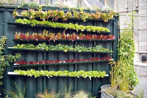 Cool Garden Ideas 26 insanely cool garden fences ideas to materialize this summer Mothermeetstheroad