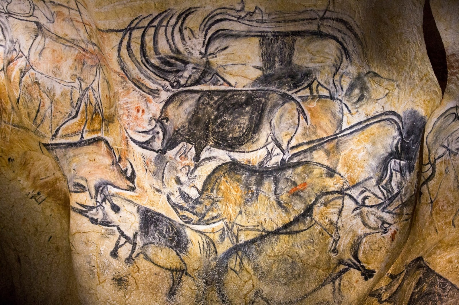 Photograph, Robert Pratta: A replica of pre-historic drawings showing animals is seen on a wall during a press visit at the site of the Cavern of Pont-d'Arc project in Vallon Pont d'Arc April 8, 2015.