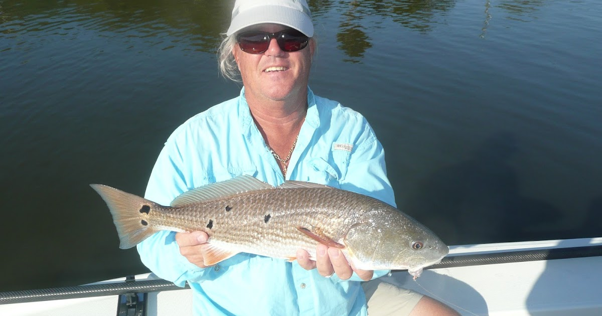 Flagler beach fishing report grouper season open for How much is a saltwater fishing license in florida