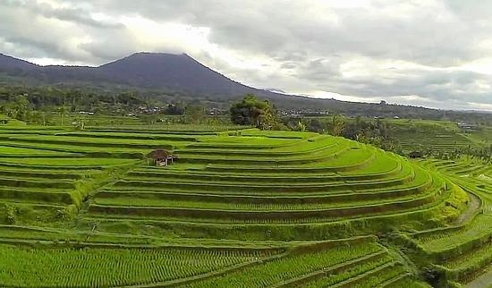 Subak and the concept of Tri Hita Karana in Bali
