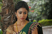 Shriya Saran latest Photos in saree-thumbnail-4