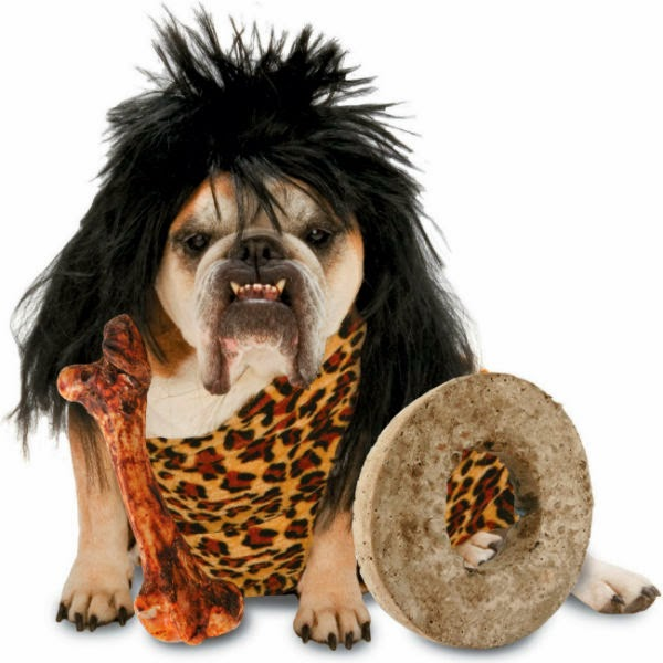 perro disfrazado de cavernicola
