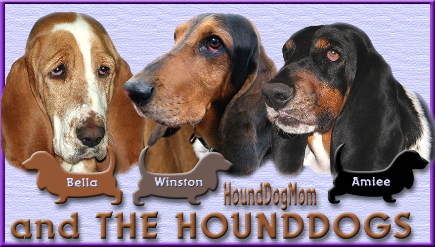 HoundDogMom