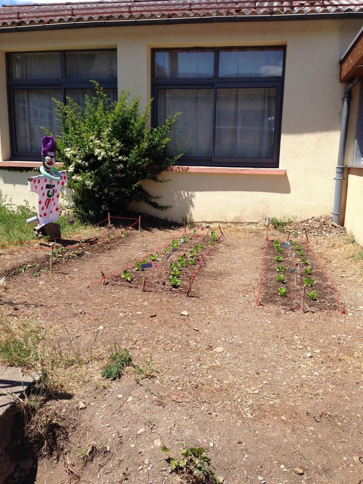 Ecole sainte famille marvejols le jardin potager des for Jardin potager 2015