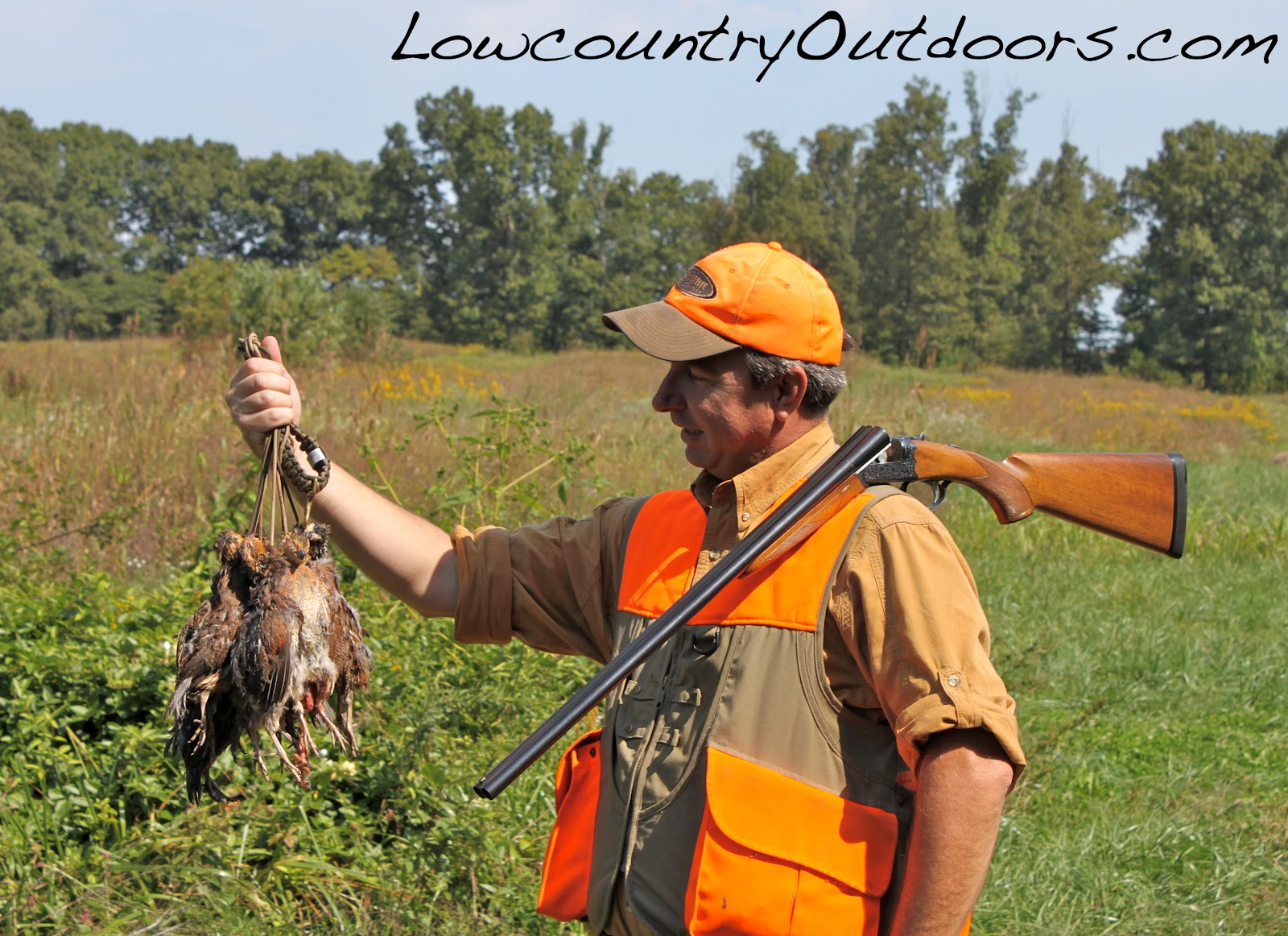 Lowcountry outdoors: Quail Preserve season opens - NBCI update