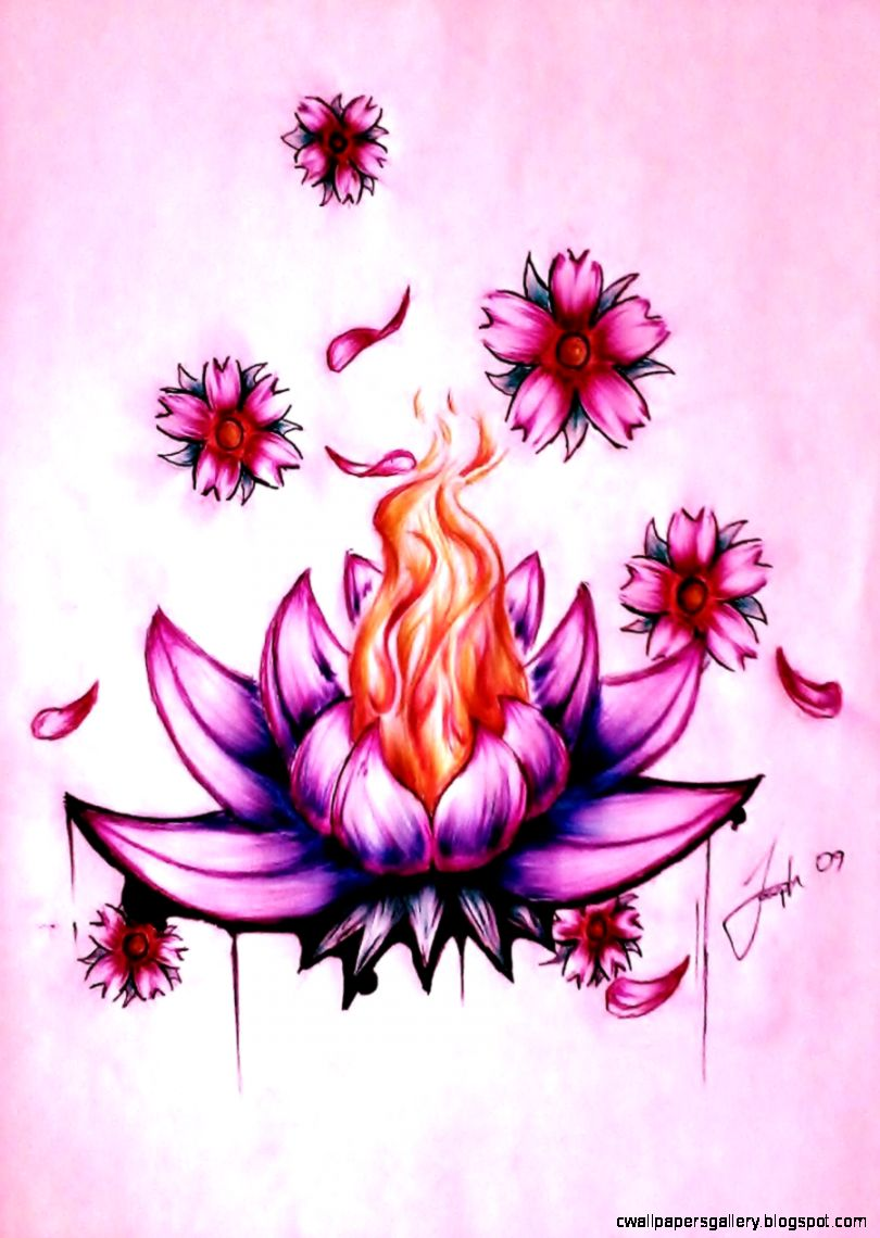 beautiful lotus flower drawing tumblr   Google Search  D