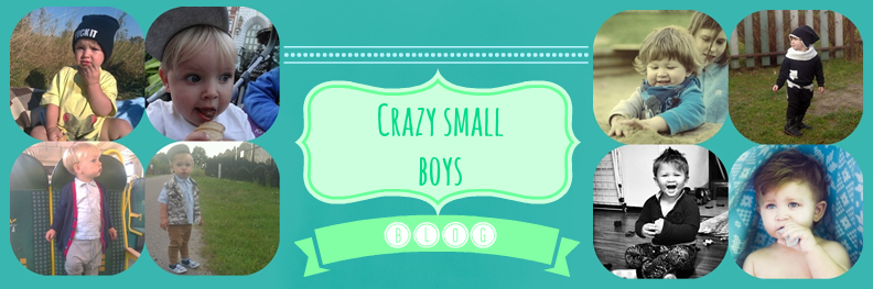 Crazy Small Boys