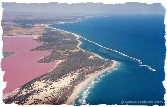 8 Danau Pink Terindah di Dunia: Danau Hutt Lagoon, Australia