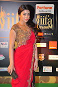Shriya Sizzling in saree at IIFA Utsavam-thumbnail-8