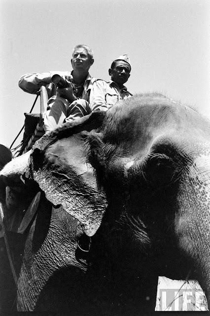 Tiger+Hunting+Photographs+of+India+-+1965+%252824%2529