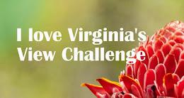 Virginia's view