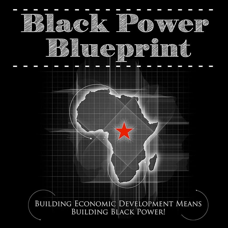 Donate Today! APEDF's latest advancement: Black Power Blueprint!