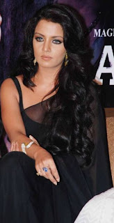 Celina Jaitley in blacktransparent saree