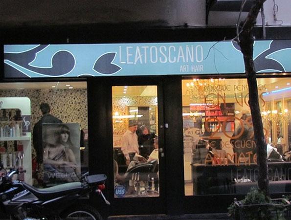 Lea Toscano Art Hair 2013. Estilistas en Buenos Aires.