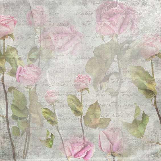 stampingallday blogspot vintage rose free download