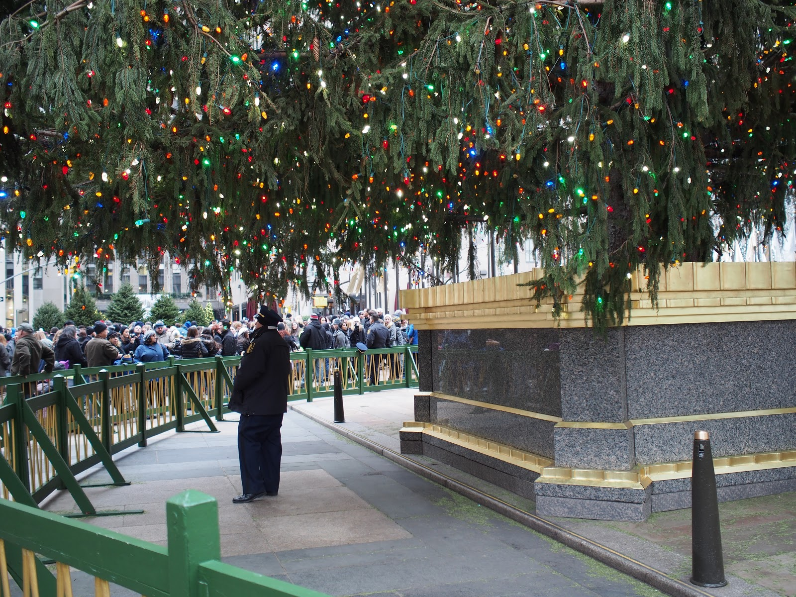 Tree Guard #treeguard  #holidays #holidaysinNYC #rockefellercenter #NYC ©2014 Nancy Lundebjerg