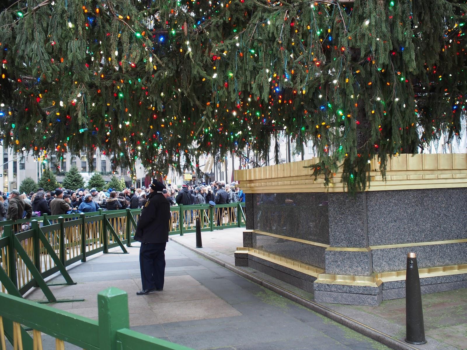 Tree Guard #treeguard  #holidays #holidaysinNYC #rockefellercenter #NYC ©2014 Nancy Lundebjerg