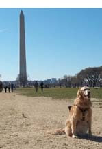 Sophie & the Washington Monument