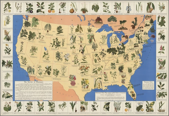 Map Of Natural Cures In The USA In Before Big Pharma - Us map with world map in the corner