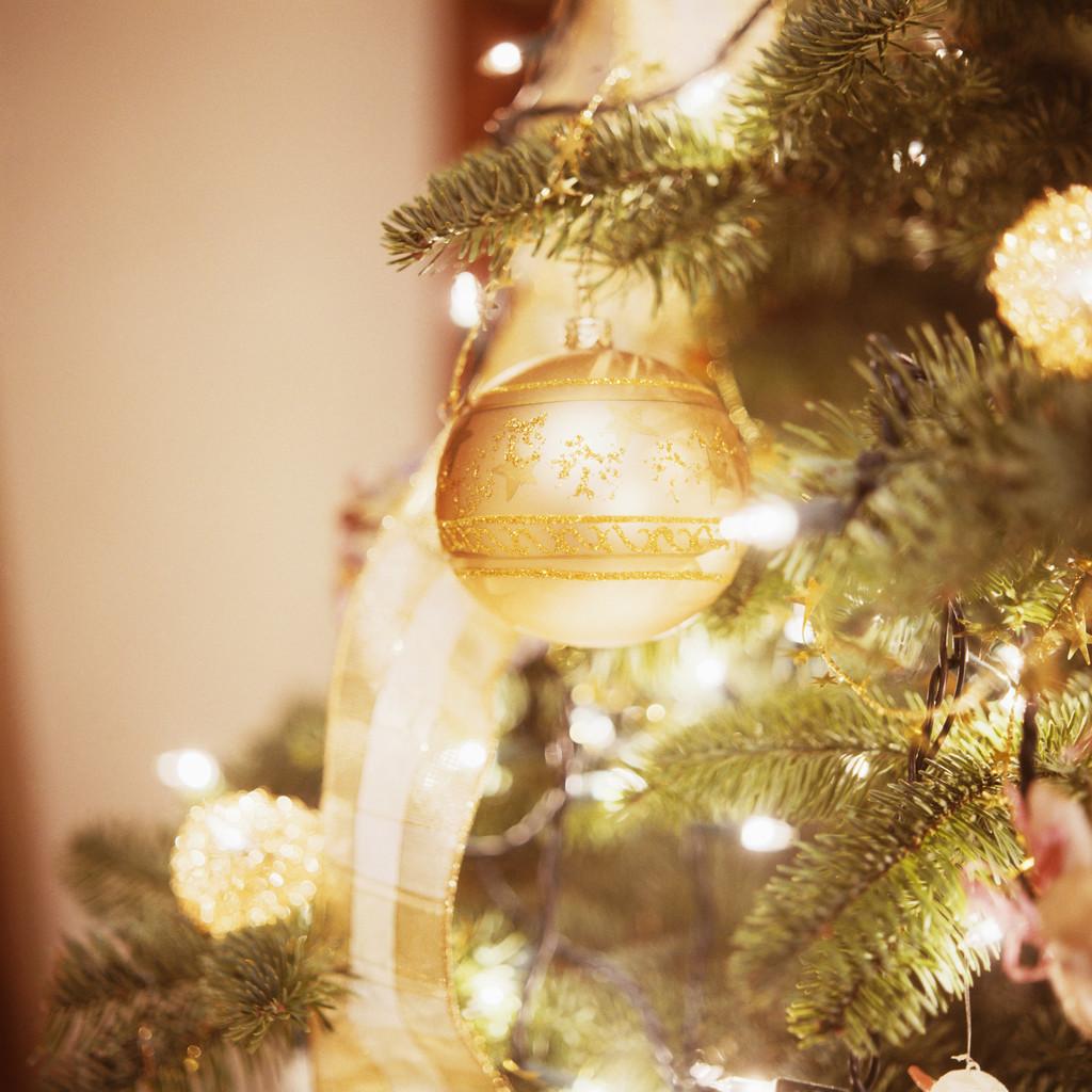November 2016 Grayslake Tree Lighting Festival And Holi