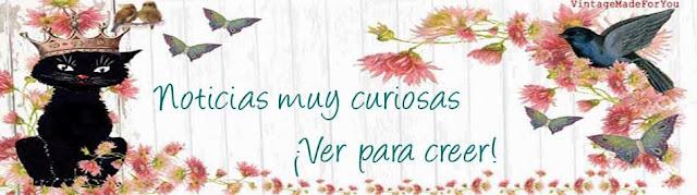 NOTICIAS MUY CURIOSAS   ¡Ver para creer!