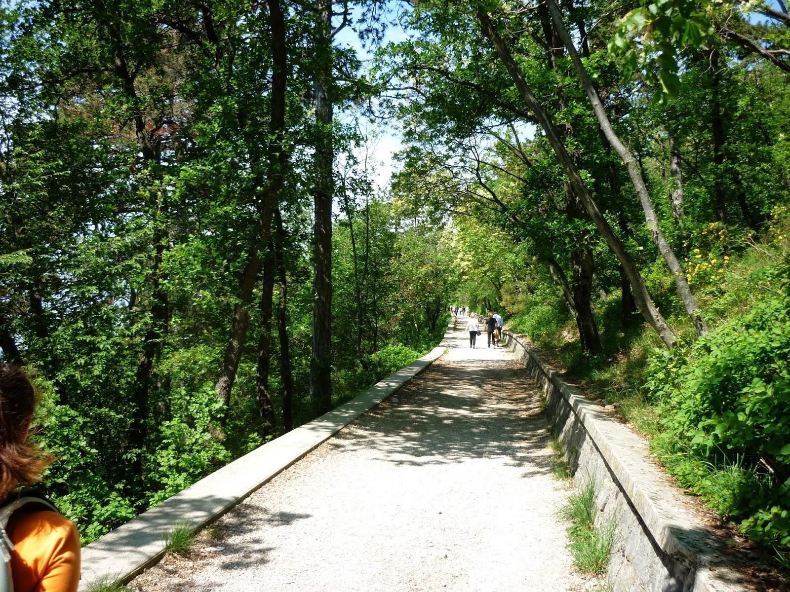 strada napoleonica trieste opicina