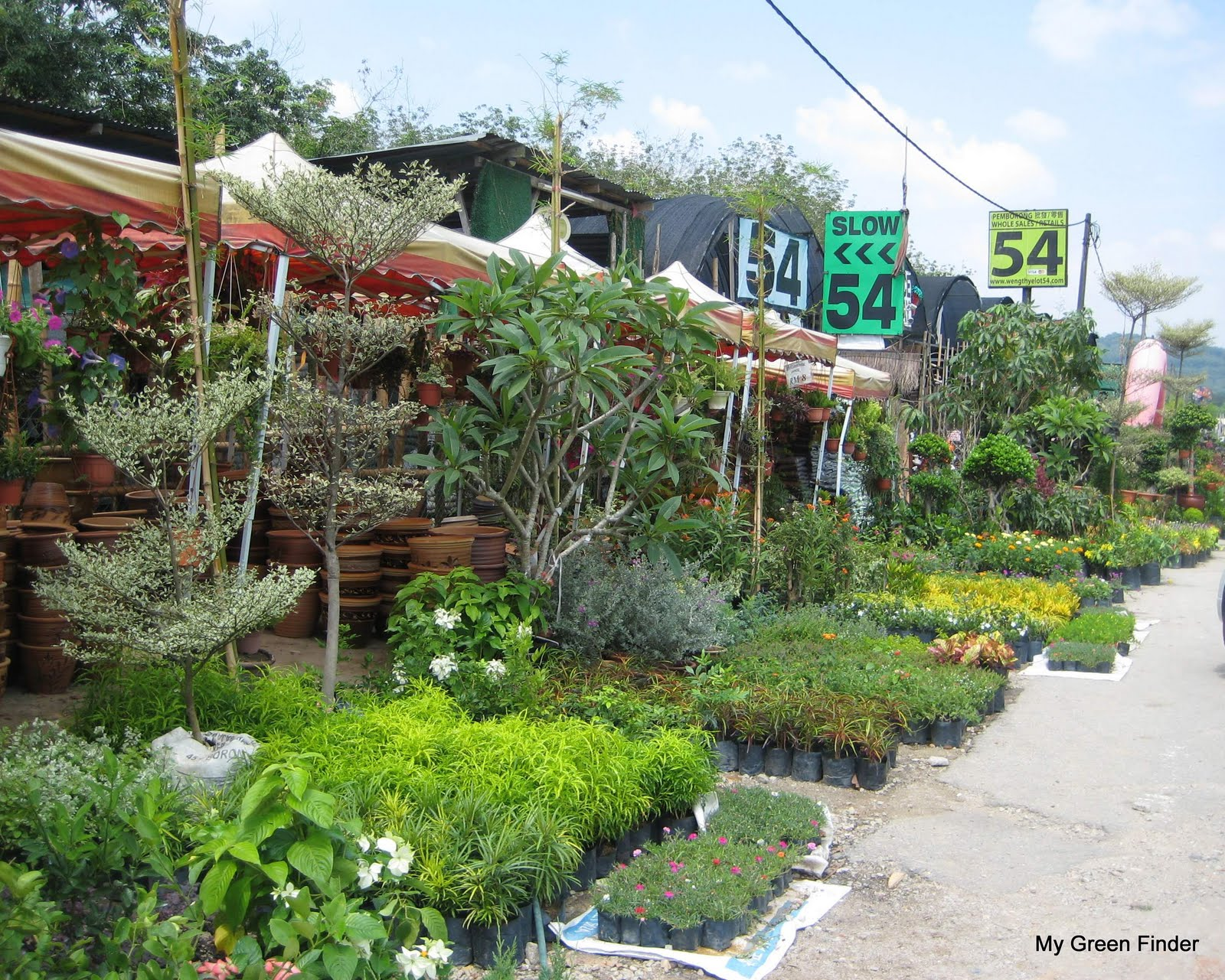 They Have Been In The Business At This Place For More Than 5 Years Besides Operating Branch Nursery Garden