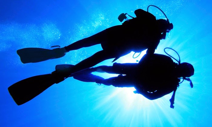 The Tips You Can You Use To Get A Good Dive Shop Atlanta Has