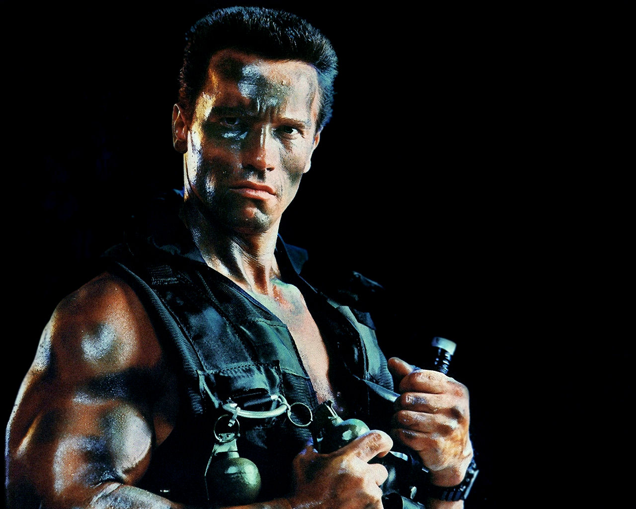 Celebrity Gallery Arnold Schwarzenegger Stunning Wallpapers