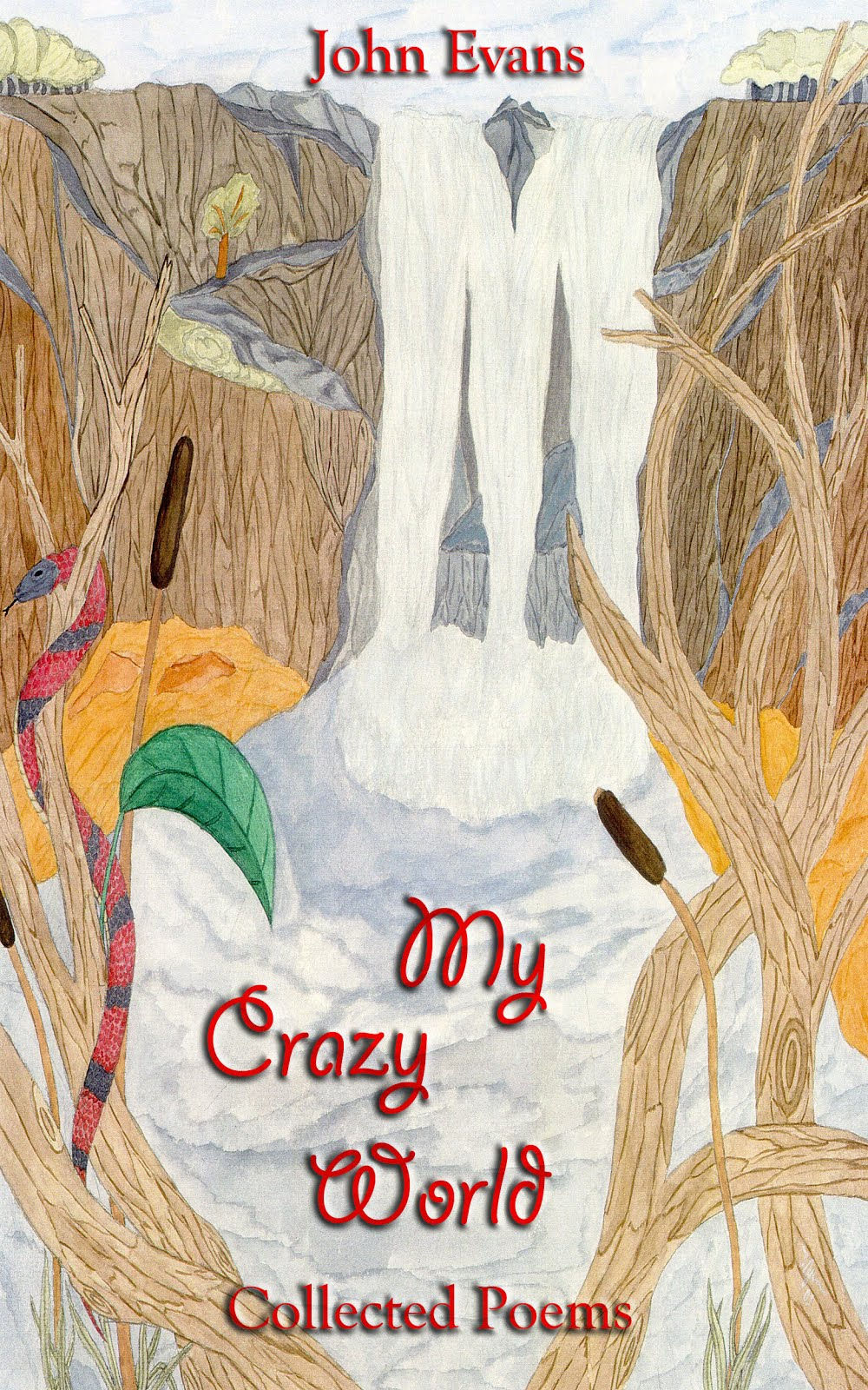 My Crazy World