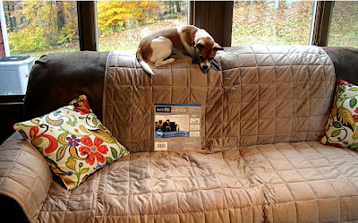 http://yourhomeonlybetter.com/puppy-playdate-tested-surefit-sofa-cover/