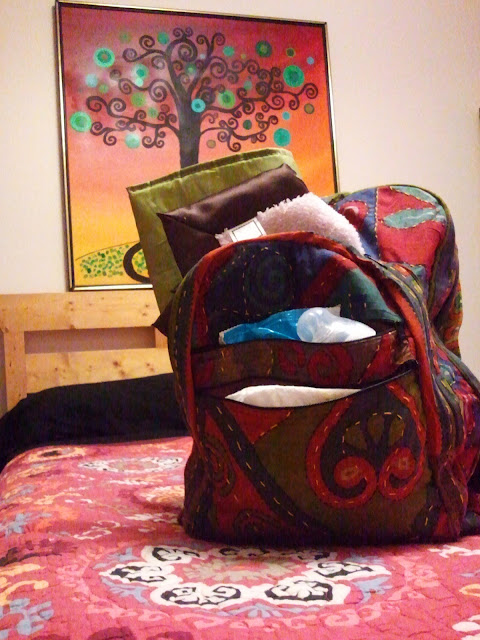 backpack+lots+of+room - Dandelion Wine Backpack