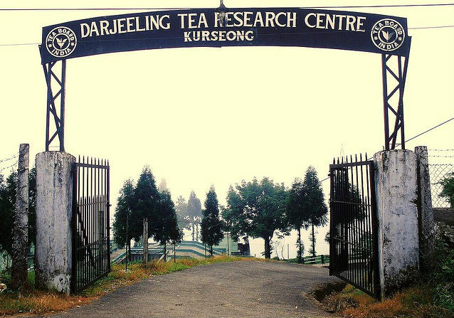 Darjeeling Tea Research Centre - Kurseong