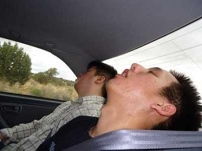 Larry and Andy asleep in car