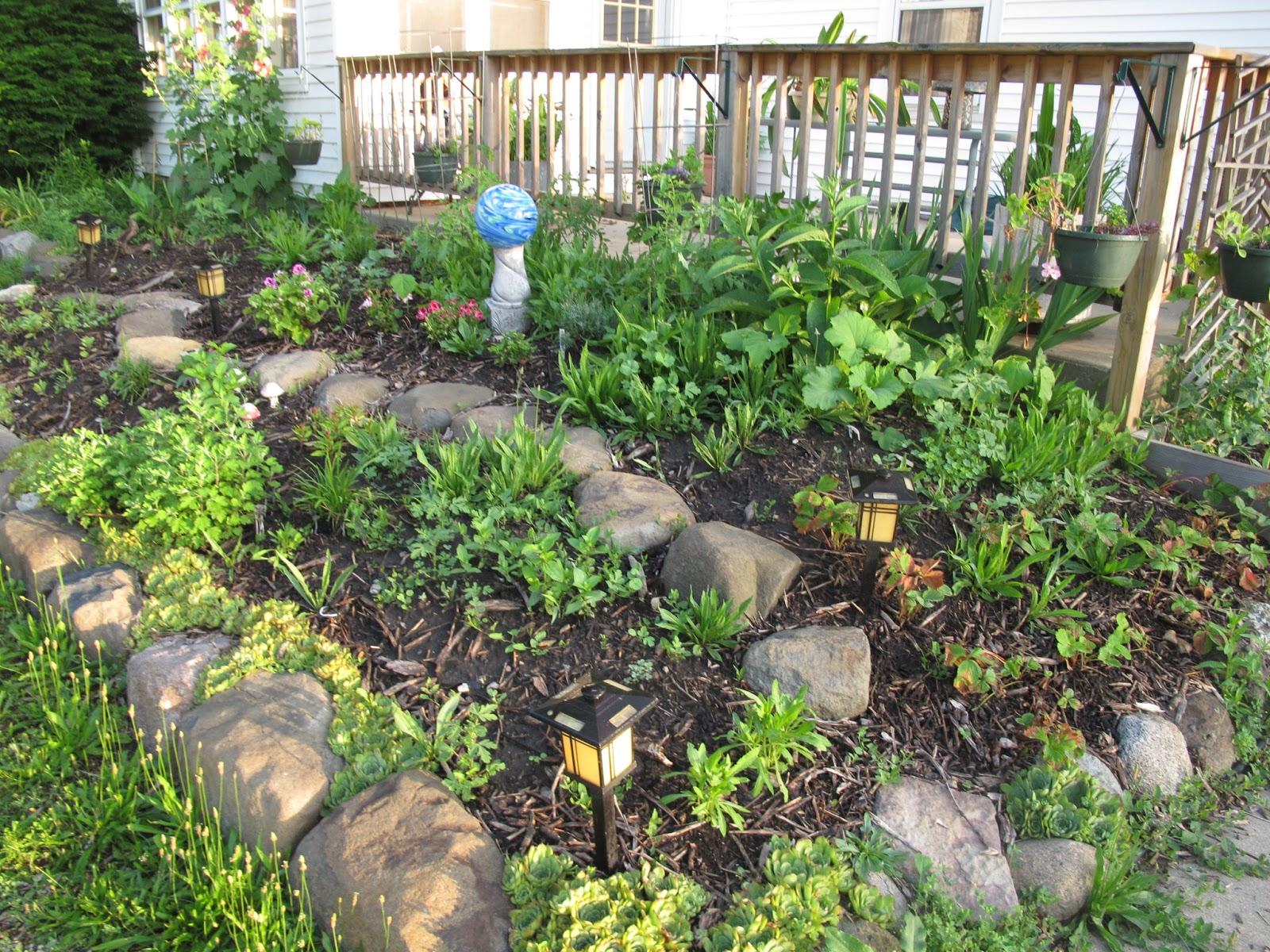 Joe 39 S Garden Journal Hugelkultur Update 6 27 13