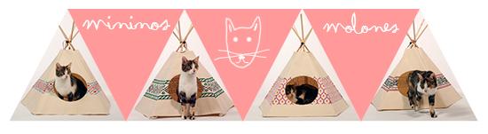 Cat Tipi - Gatos - Tienda campaña