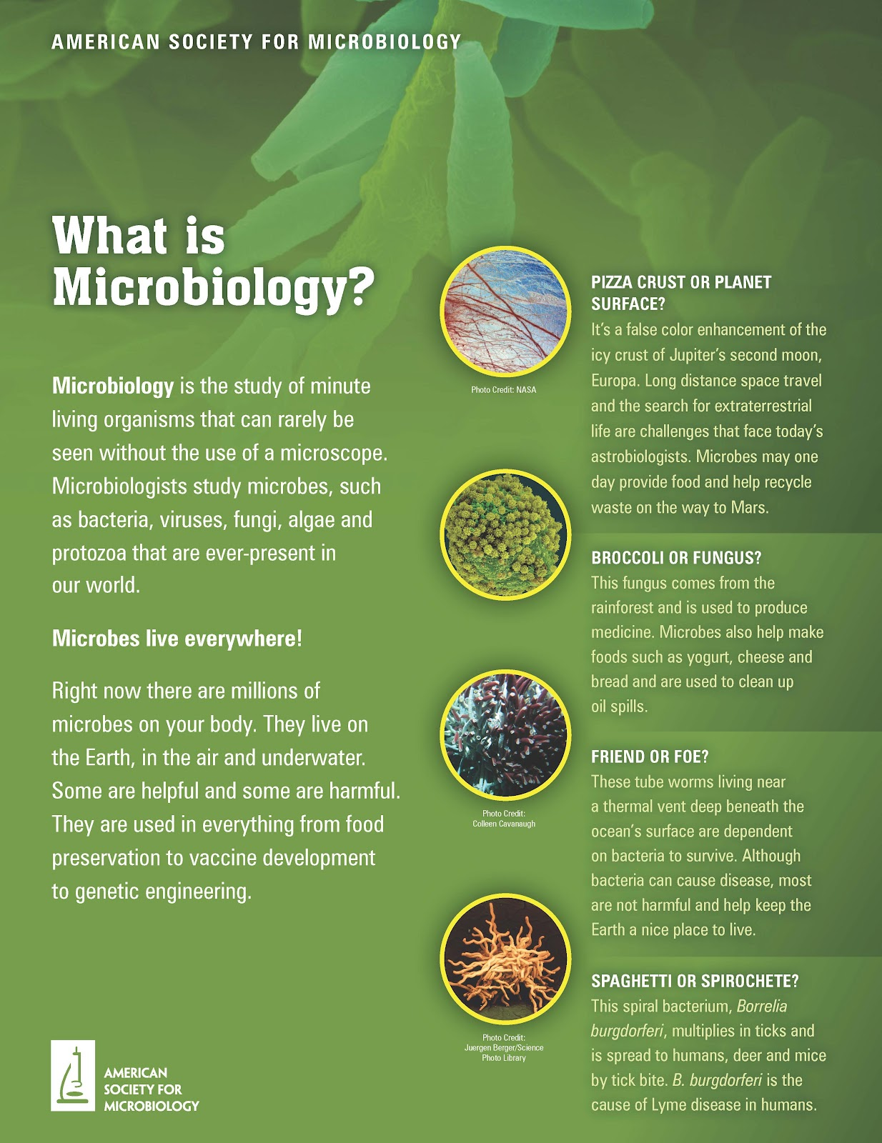 Microbiologists