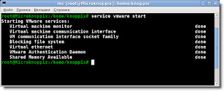 Knoppix 7.0.3 & VMware Workstation 8.0.4