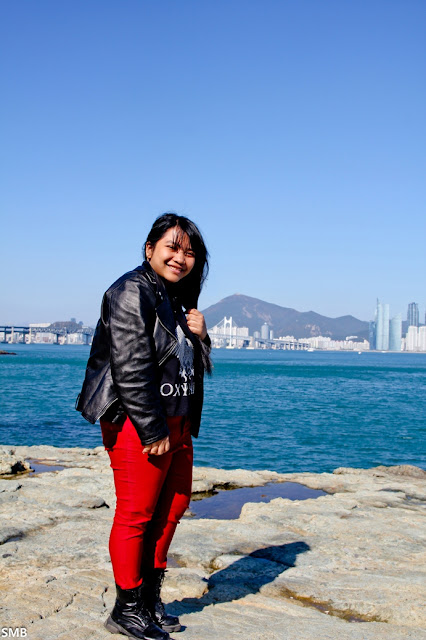 busan travel blogger