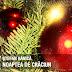 Stefan Banica - Noaptea de Craciun (piesa noua)