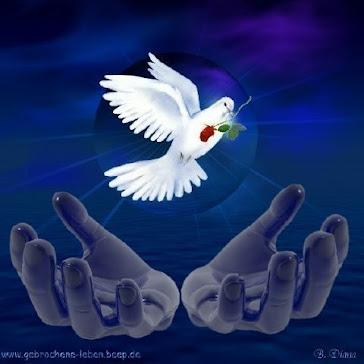 a Pomba Transmite uma certa liberdade ao Homem