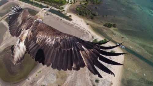 Dronestagram: las mejores imágenes y videos tomadas por drones en todo el mundo.
