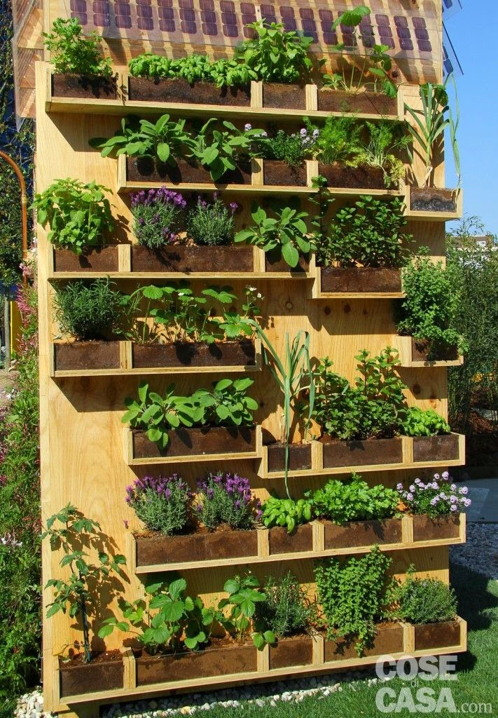 Cosmomum realizzare un orto a casa 9 alternative - Casa da costruire ...