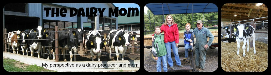 The Dairy Mom