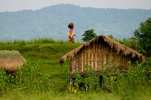 A village outside the eastern Agoratoli range at Kaziranga National Park (photo - Nassif Ahmed)