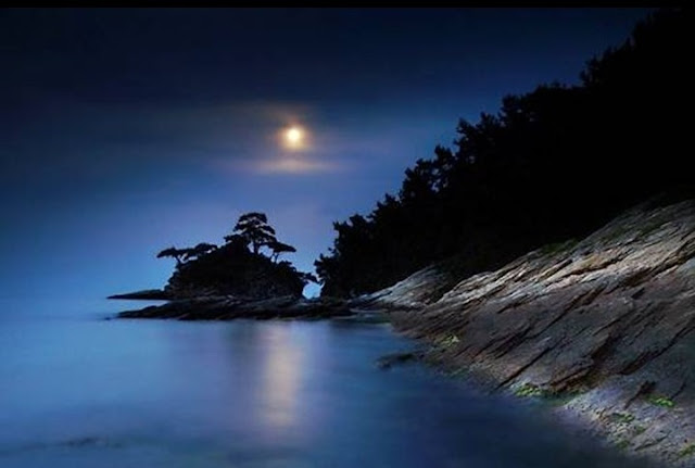 Moon Light Seen On www.coolpicturegallery.us
