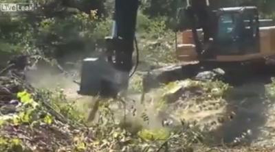 Απίστευτο...Δείτε πώς αυτό το μηχάνημα εξαφανίζει το δέντρο μέσα σε μερικά δευτερόλεπτα (video)