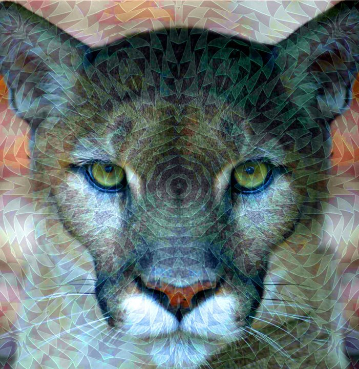 Fractalius | Il plugin artistico del digitale